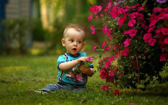 """Livro sensorial ou """"quiet book"""" é uma boa opção para estimular os sentidos de seu filho?"""