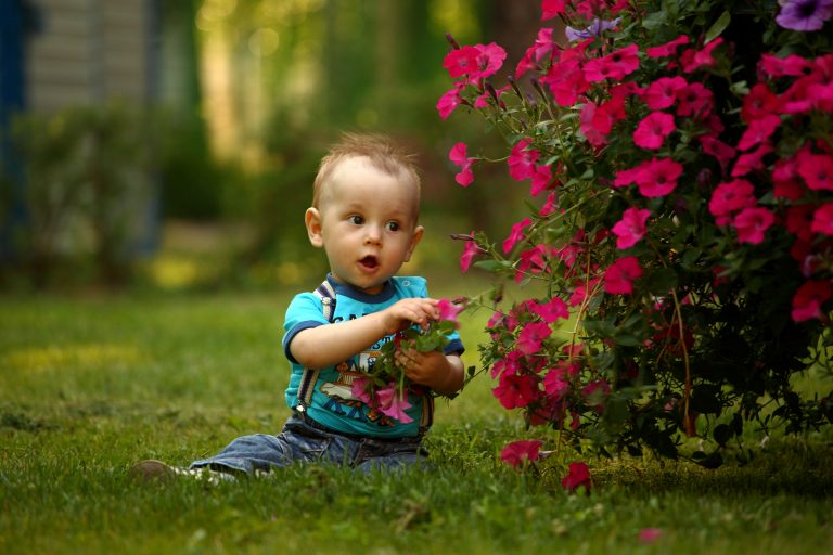 menino na grama com flores experiência sensorial