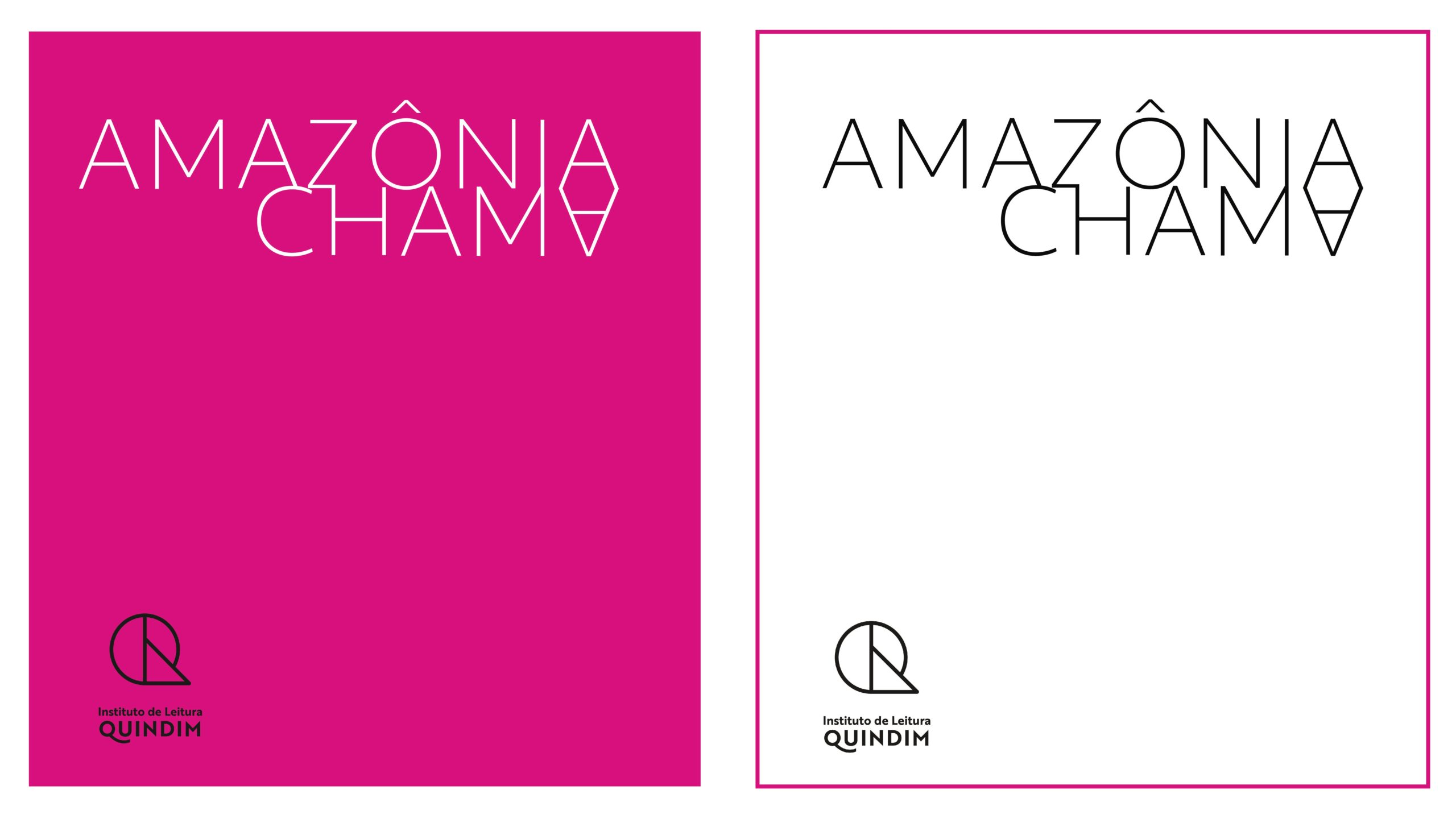 Instituto de Leitura Quindim lança o projeto Amazônia Chama