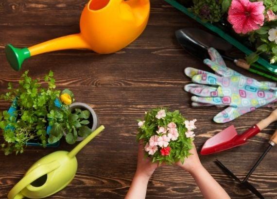 Como fazer uma horta para crianças