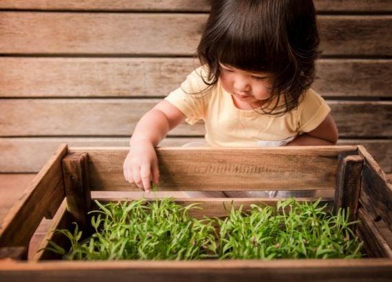 Horta para crianças: os benefícios da jardinagem infantil