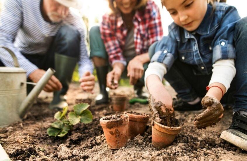 Horta para crianças. Veja como fazer uma horta caseira
