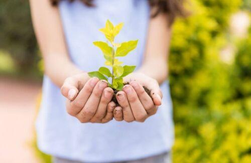 Ensinar ações sustentáveis às crianças para melhorar o mundo
