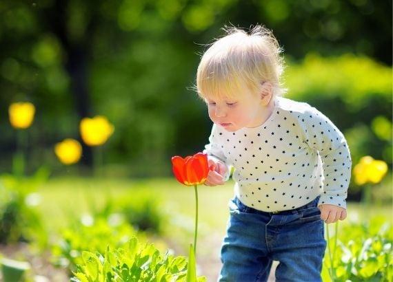 desenvolvimento dos sentidos dos bebês